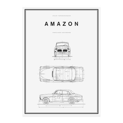 Amazon Lijntekening Poster